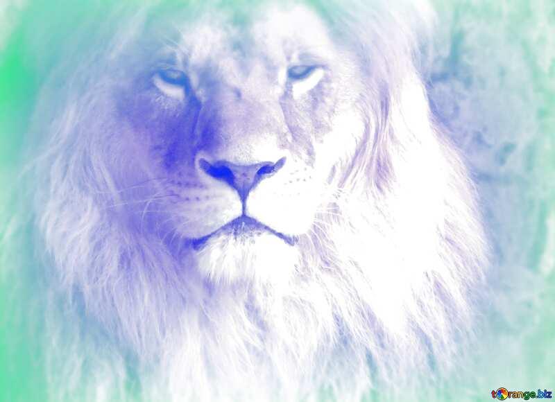 lion light blur frame №44974