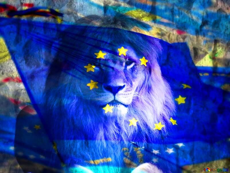 lion euro №44974