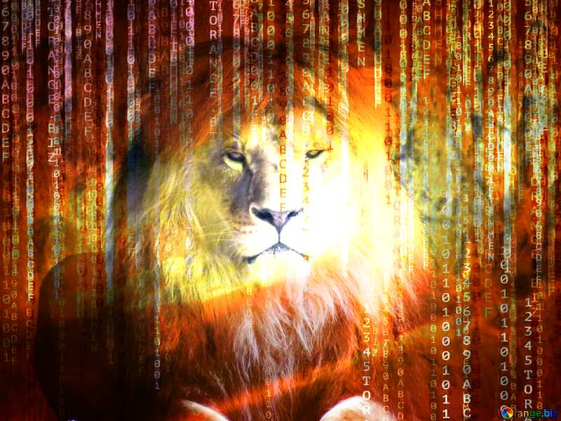 lion binary code technology background №44974