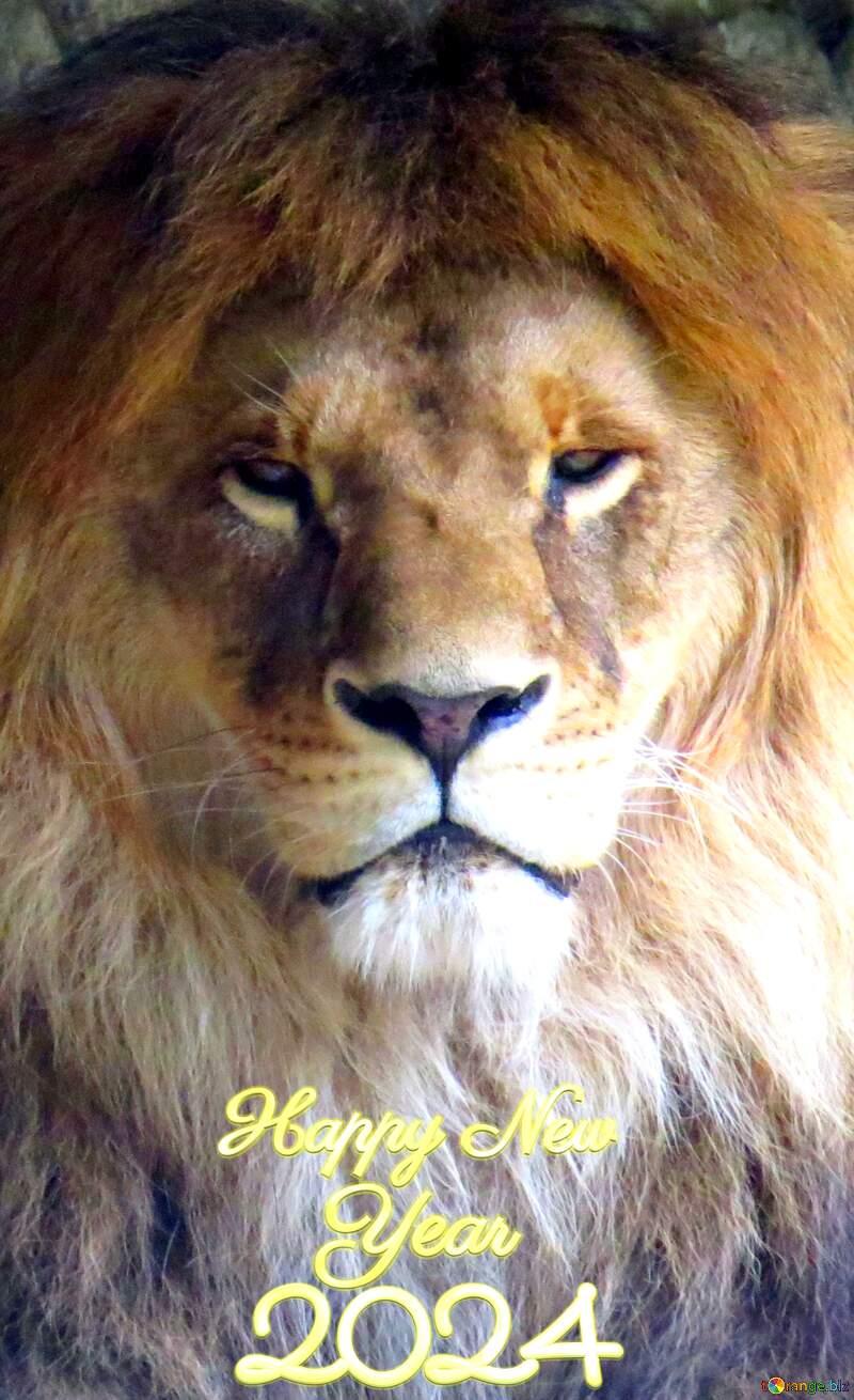 happy new year 2020 lion №44974