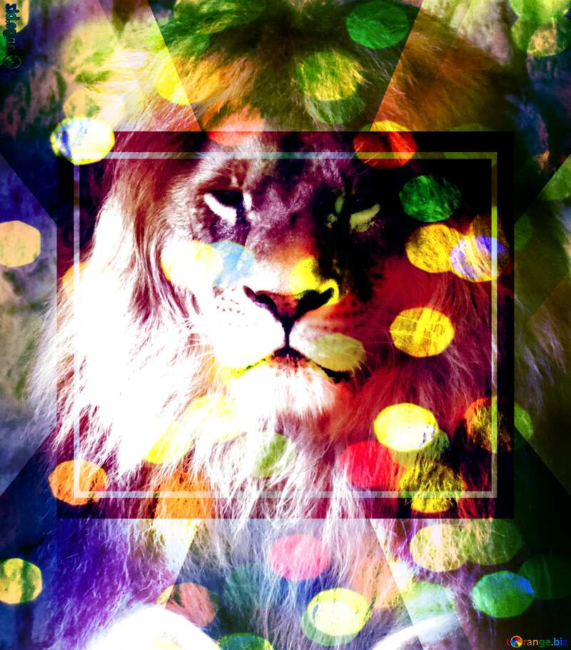 lion bokeh background powerpoint website infographic template banner layout design responsive brochure business №44974