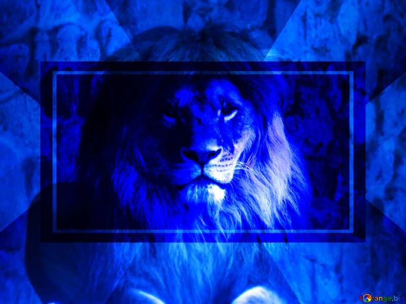 A lion dark blur blue powerpoint website infographic template banner layout design responsive brochure business №44974
