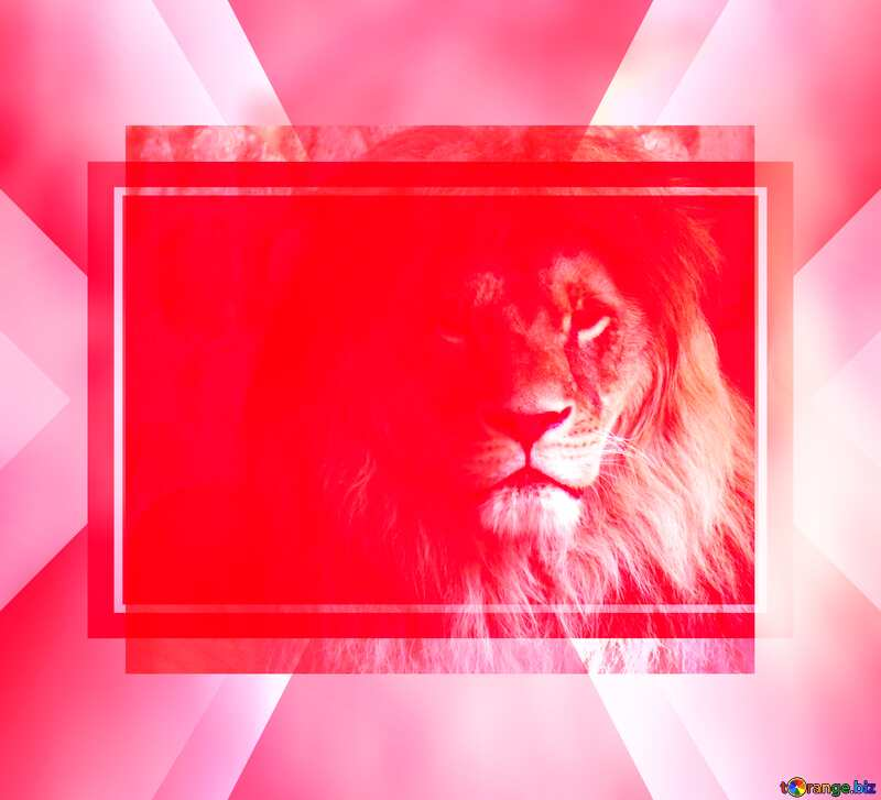 lion red fuzzy border powerpoint website infographic template banner layout design responsive brochure business №44974