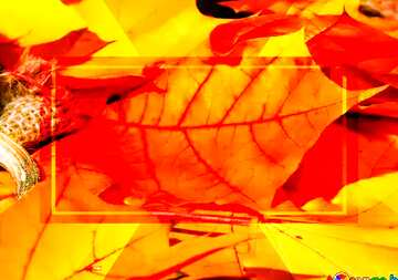 The effect of light. Very Vivid Colours. Fragment.