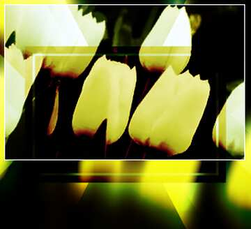 The effect of the hard dark. The effect of stained green. Blur dark frame. Fragment.