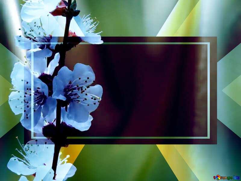 Spring golden background powerpoint website infographic template banner layout design responsive brochure business №29937