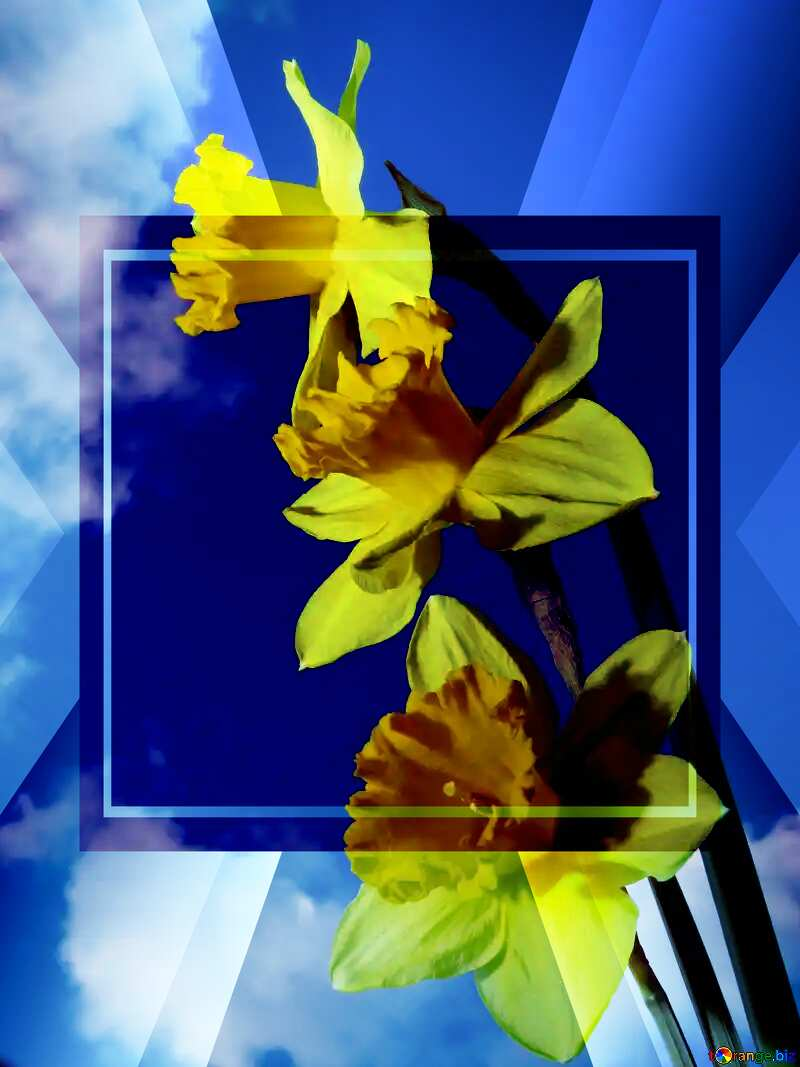 Spring bouquet powerpoint website infographic template banner layout design responsive brochure business №30957