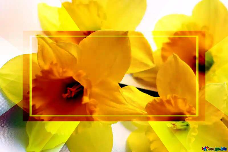 Yellow flowers powerpoint website infographic template banner layout design responsive brochure business №29991