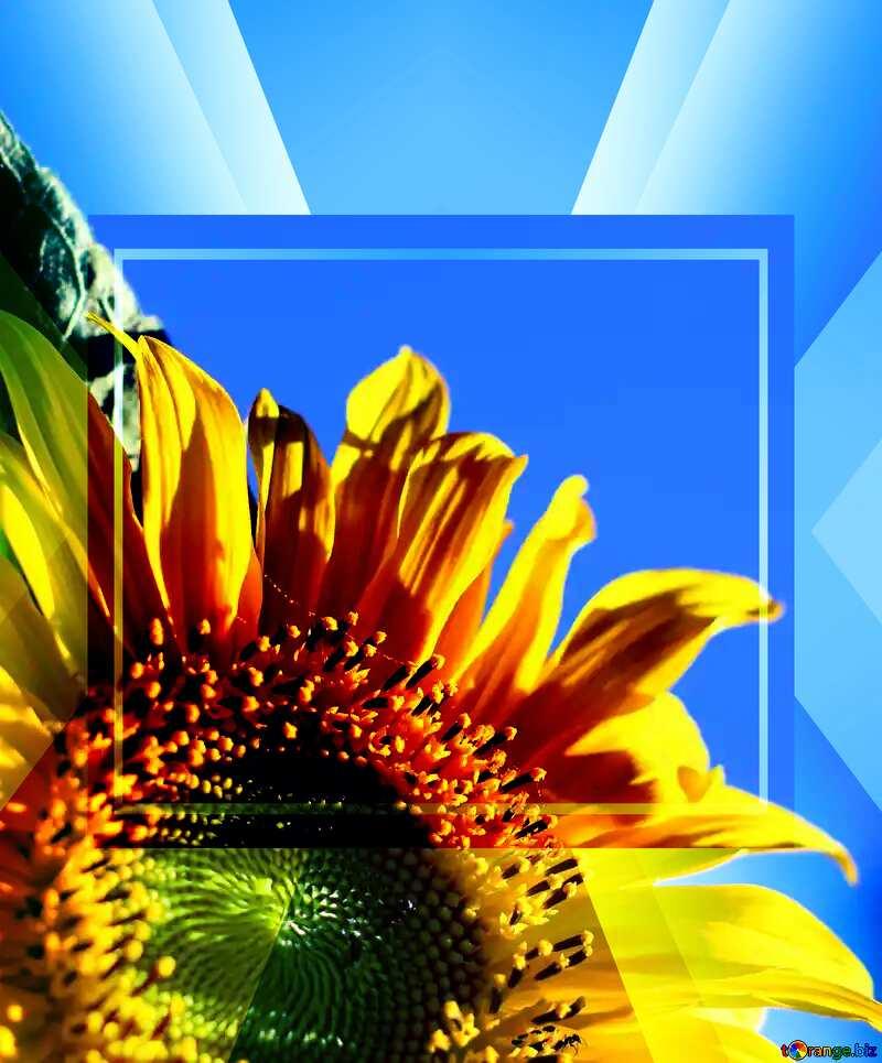 Flower frame №32680