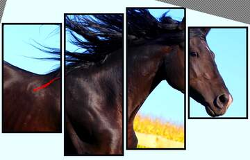 Die Wirkung der Kontrast. Sehr klare Farben. Bruchstück. Modular Bild mit einem hellen Hintergrund.