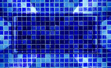 The effect of contrast. The effect of stained blue. Fragment.