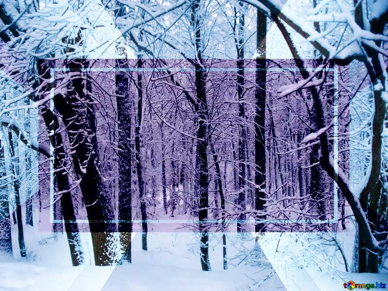 Winter Forest Layout Powerpoint Infographic Template №10505