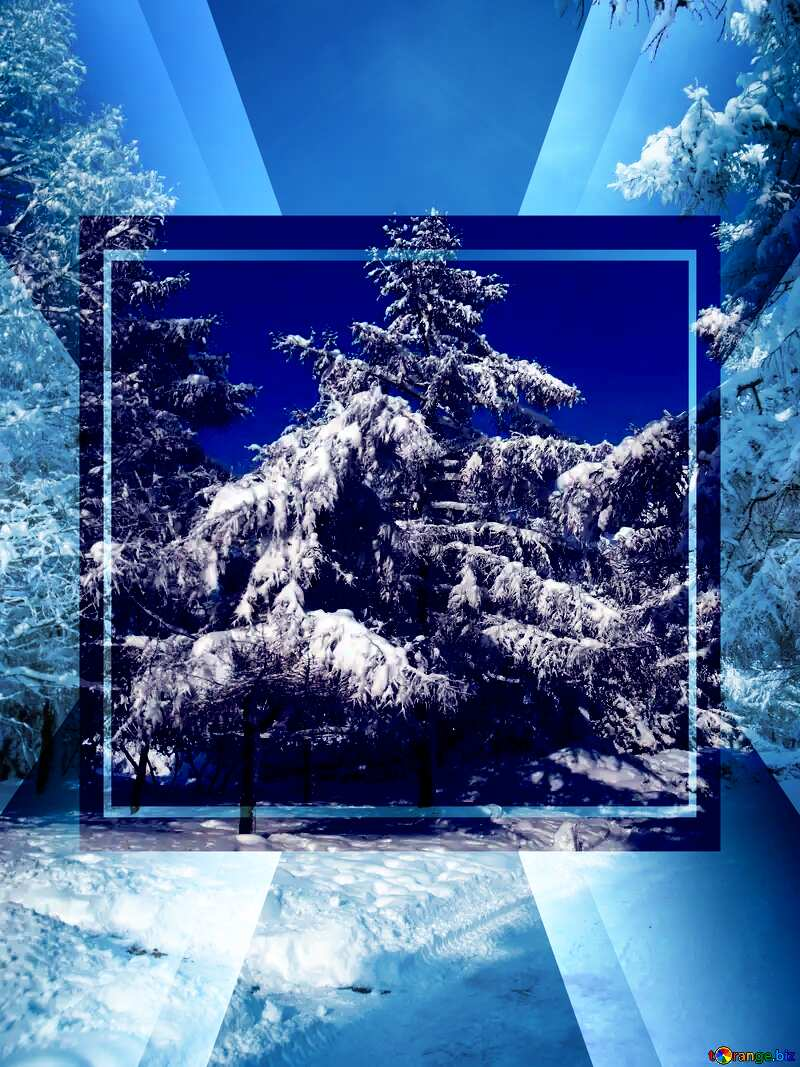 Snow at Trees Template №10543