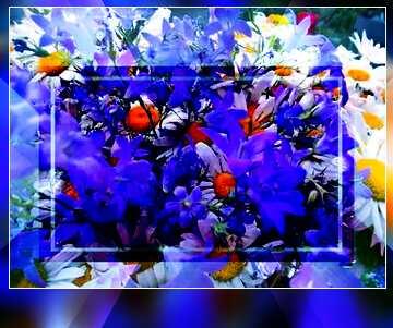 Die Wirkung der Spiegel. Die Wirkung der Kontrast. lebendige Farben. Unschärfe Rahmen.