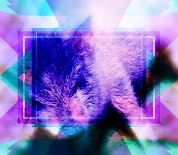 The effect of hard light. Very Vivid Colours. Blur frame. Fragment.