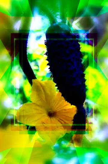 The effect of the mirror. Vivid Colors. Blur frame. Fragment.