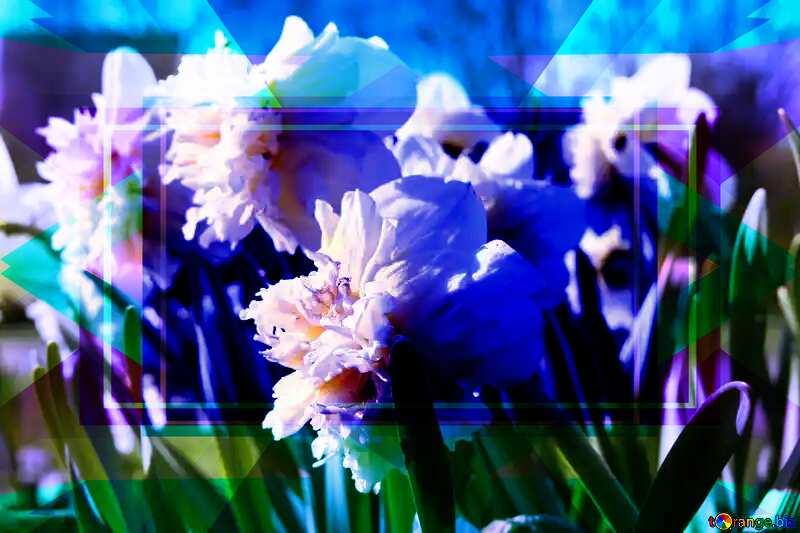 Spring Flowers Frame Design Blue Template №1751