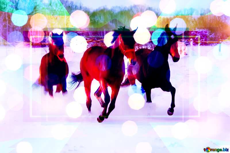 Three horses on snow Frame Design Template Illustration №3981