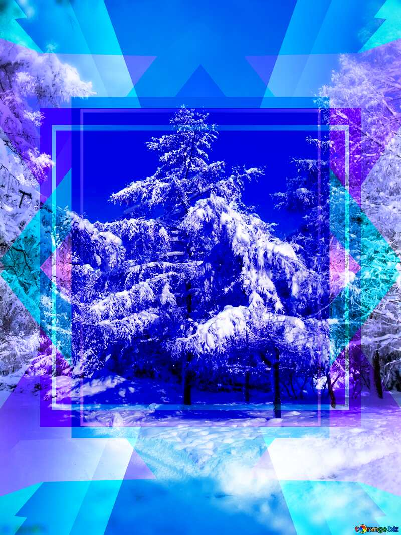 Snow at Trees Blank Design Forest Frame №10543