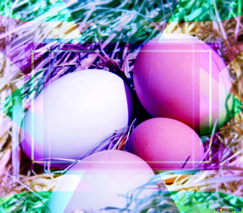 Eggs in the nest Template №1069