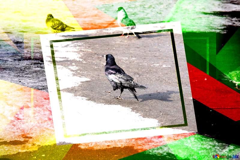 The black crow walks Creative abstract Geometrical Future Trend template frame №779