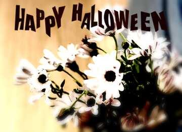 The effect of hard light. Blur frame. Happy halloween.