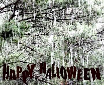 Die Wirkung von viel Licht. Unschärfe Rahmen. Happy halloween.