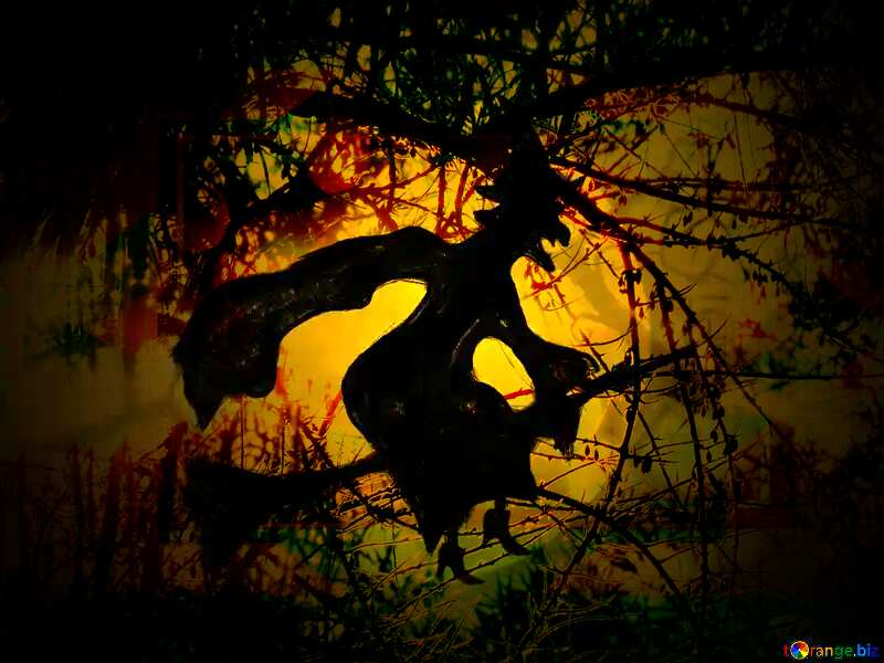 Picture Halloween witch flying on her broom Spooky forest №40587