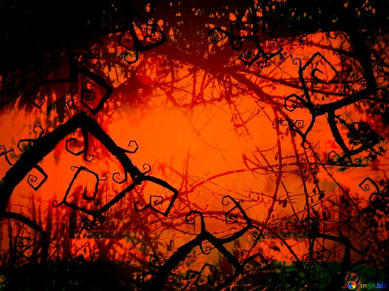 Beautiful Halloween background Spooky forest №40591