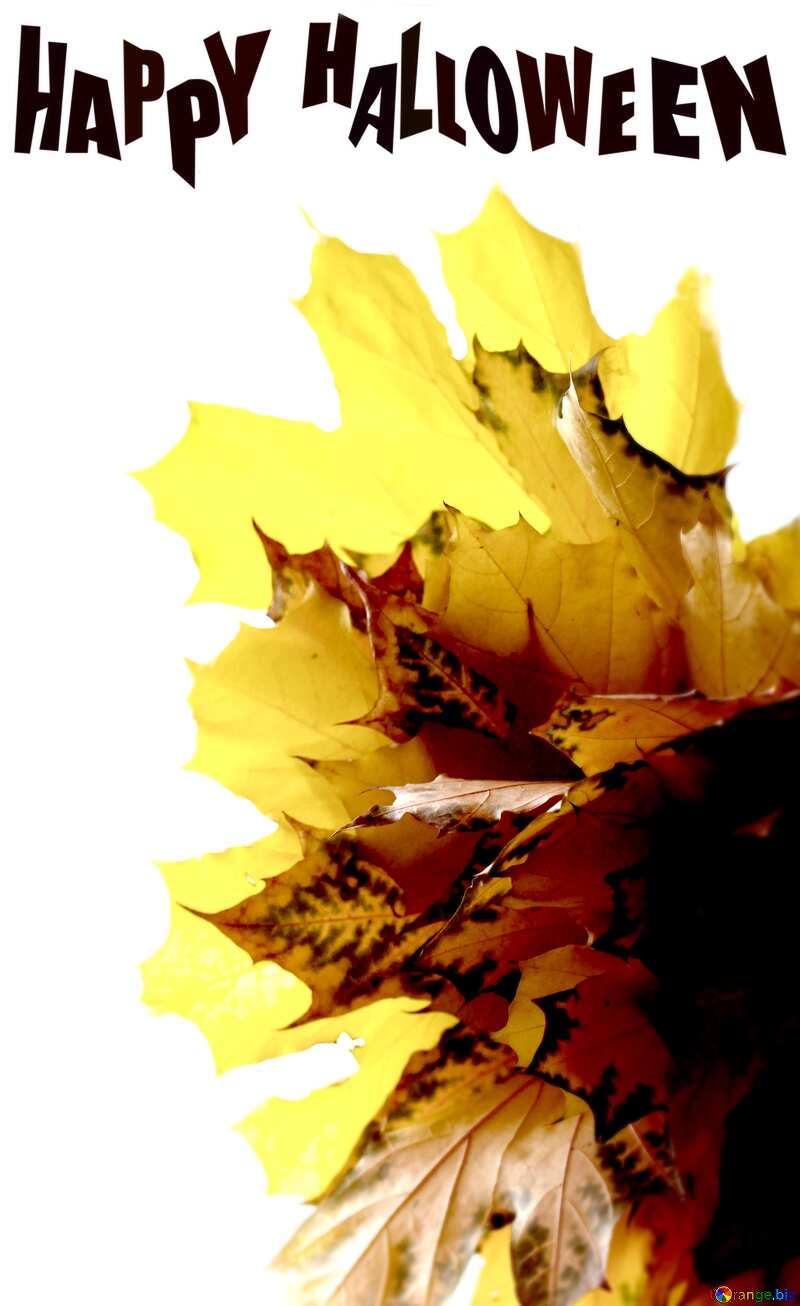 Autumn leaves bouquet Happy Halloween №40879