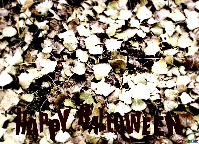 Texture: Autumn leaves Happy Halloween №3532