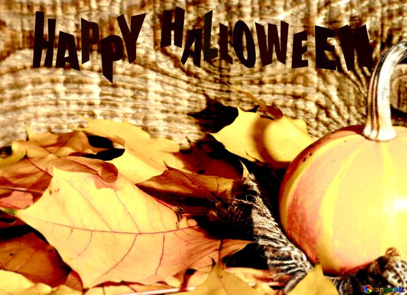 Beautiful picture with pumpkin and autumn leaves Happy Halloween №35453