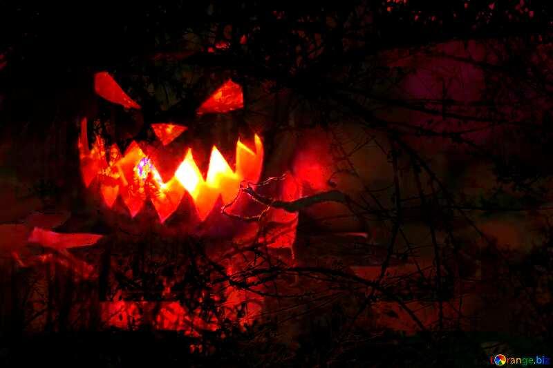 spooky Halloween pumpkin  scary forest №24284