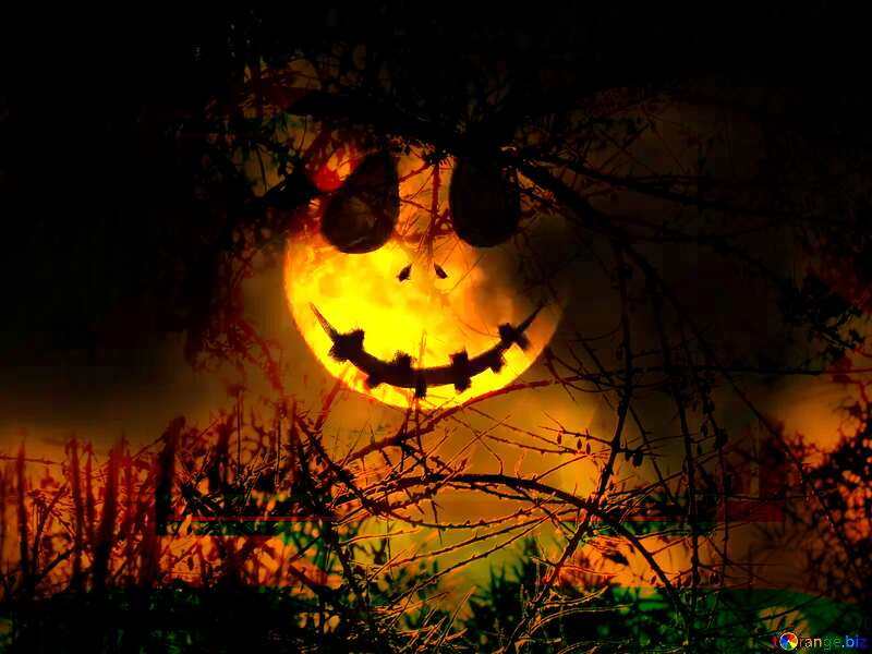 Halloween background with the Moon Spooky forest №40471