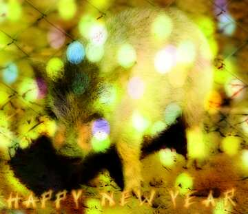 The effect of hard light. Very Vivid Colours. Fragment. Card with text Happy New Year.