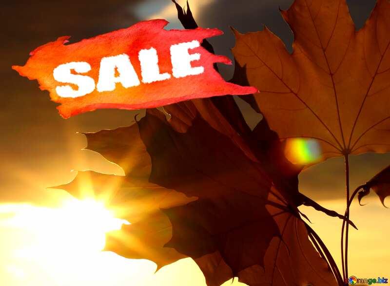 Autumn leaves sunset sale discount banner design letter №40888