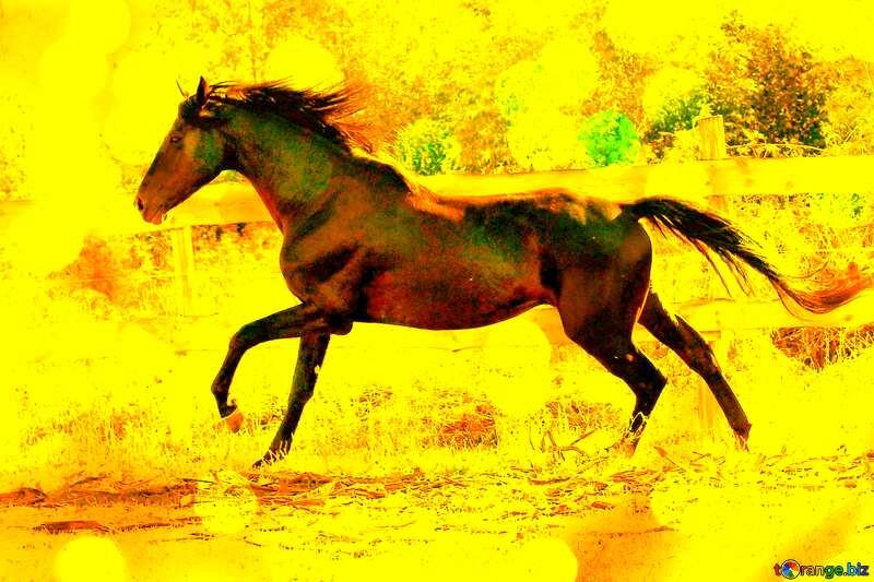 Gold horse №36651