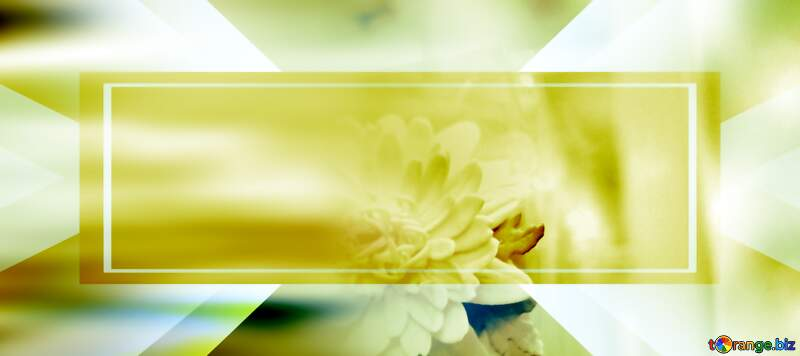 flower soft banner background №48635