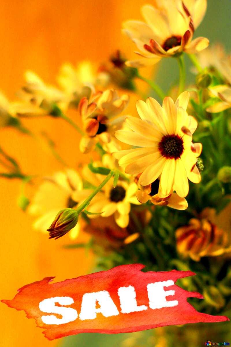 Beautiful autumn bouquet sale poster print №46861