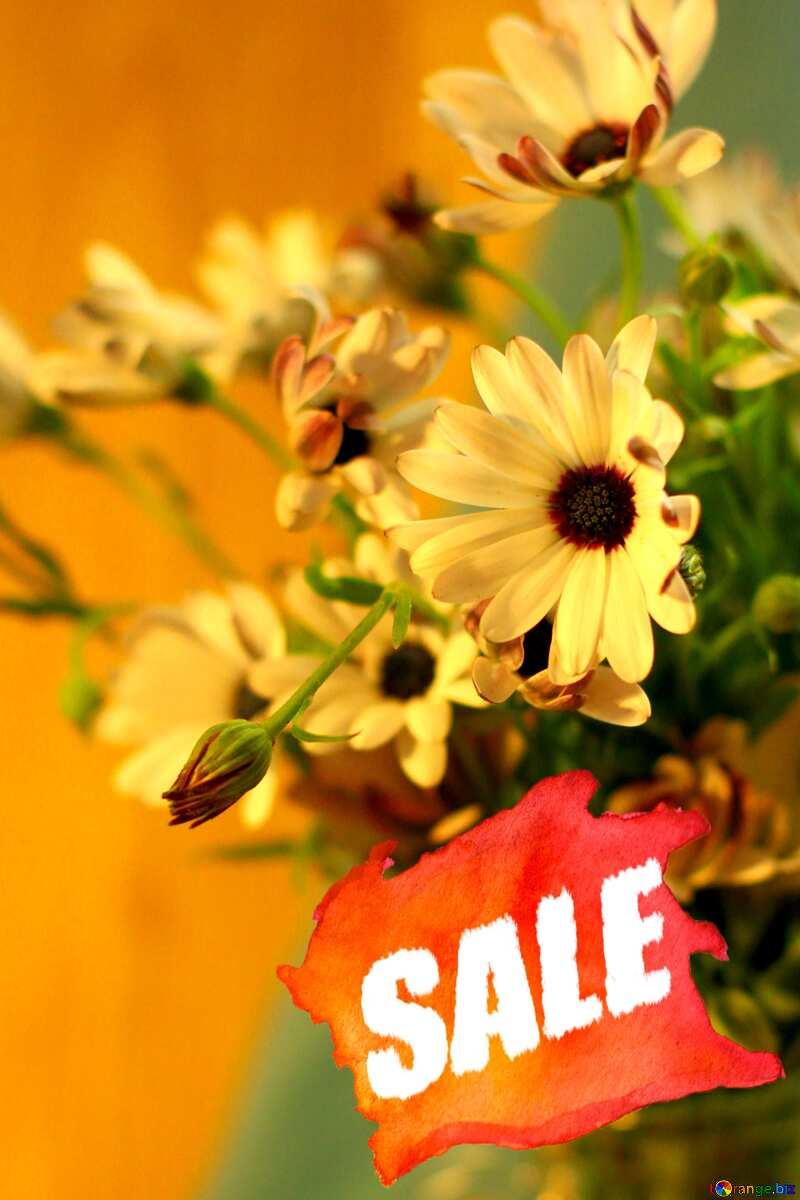 Beautiful autumn bouquet sale store shop banner №46861