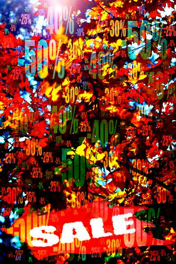 Very Vivid Colours. Fragment.