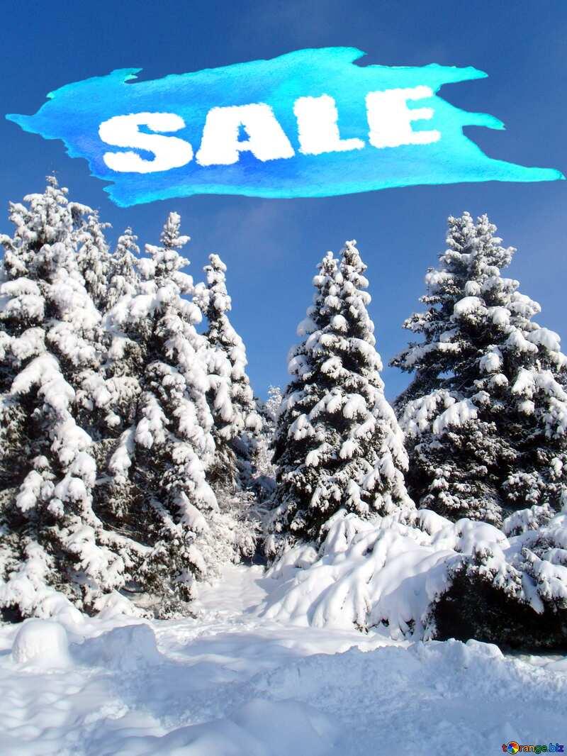 Winter sale Banner Background №10576