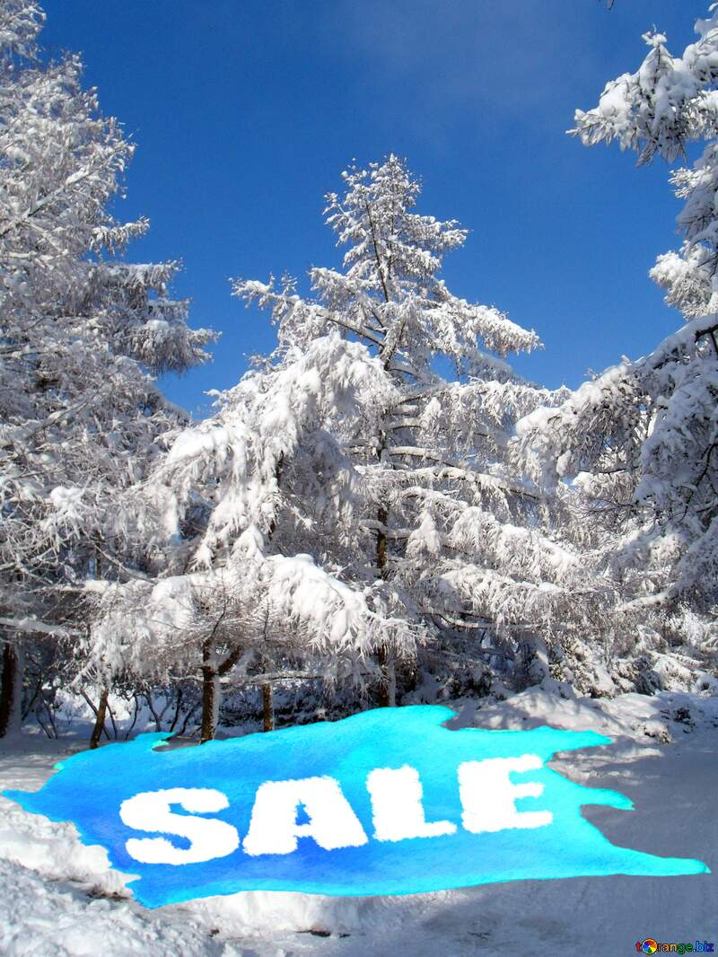 Snow at forest Trees winter Sale Banner Background Blue Design №10543