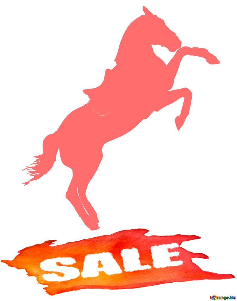Horse Silhouette Hot sale banner №46154