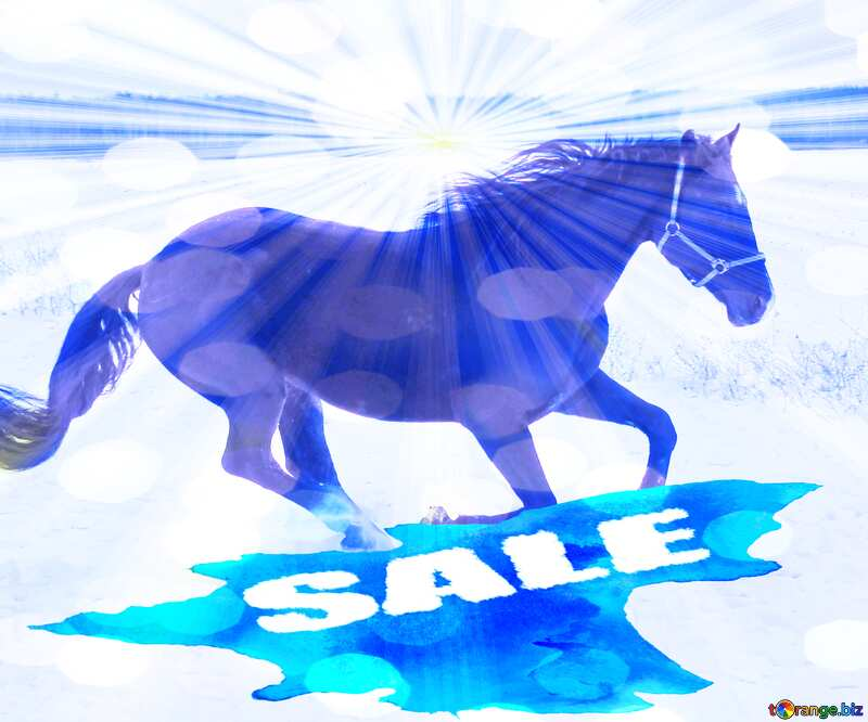 Horse in the snow winter sale banner template design background №18191