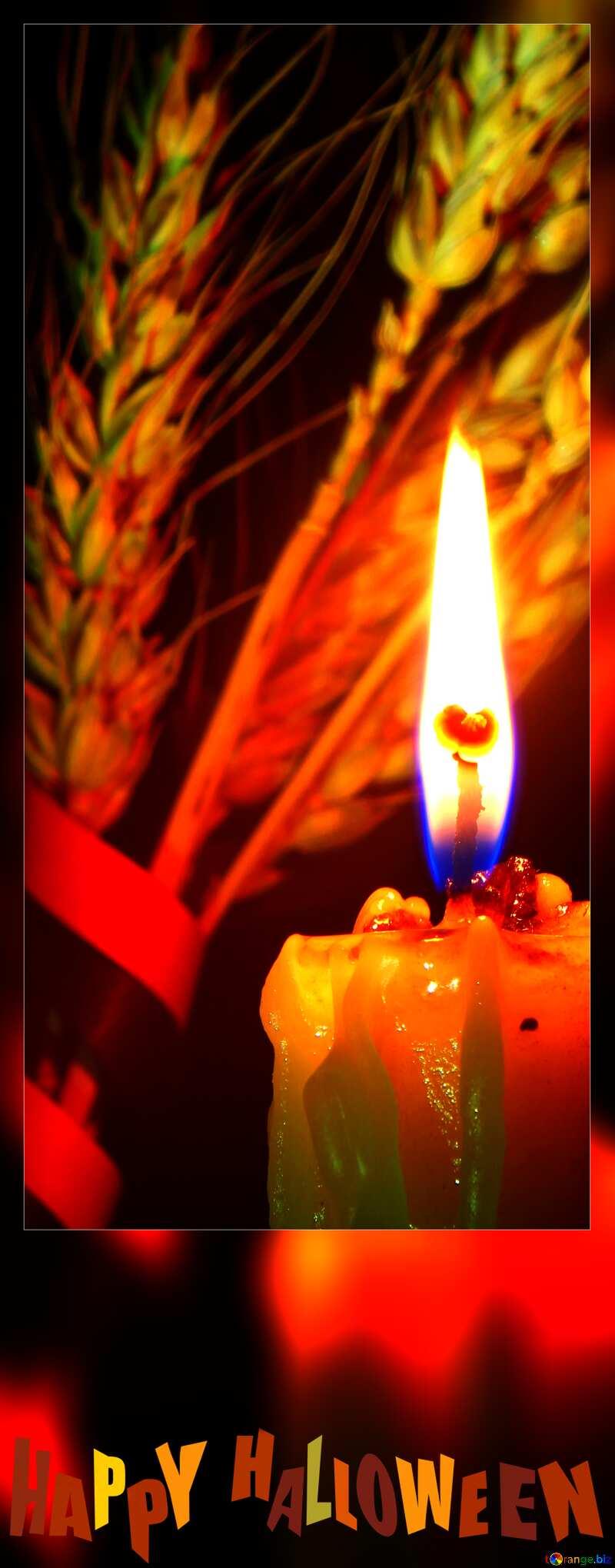 happy halloween candle blank card №37784