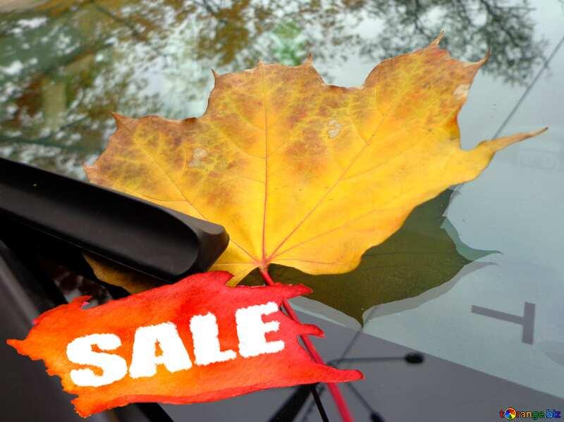 Autumn car sale discount banner design letter №28377