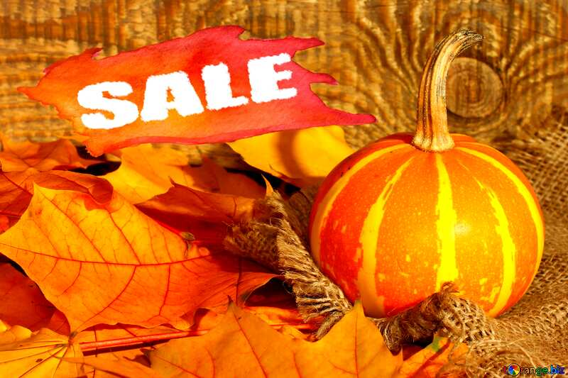 Beautiful picture with pumpkin and autumn leaves sale discount banner design letter №35453