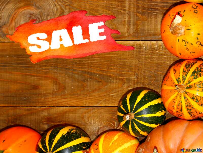 Autumn sale background with pumpkins №35213