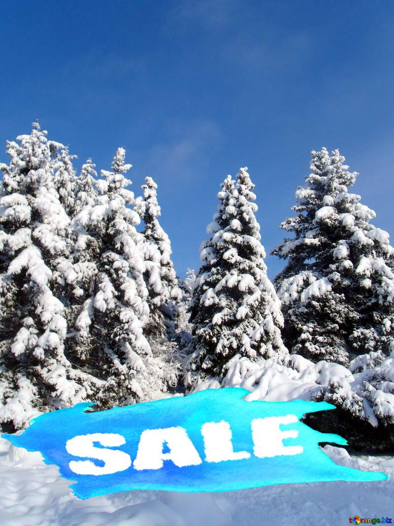 Winter sale №10576